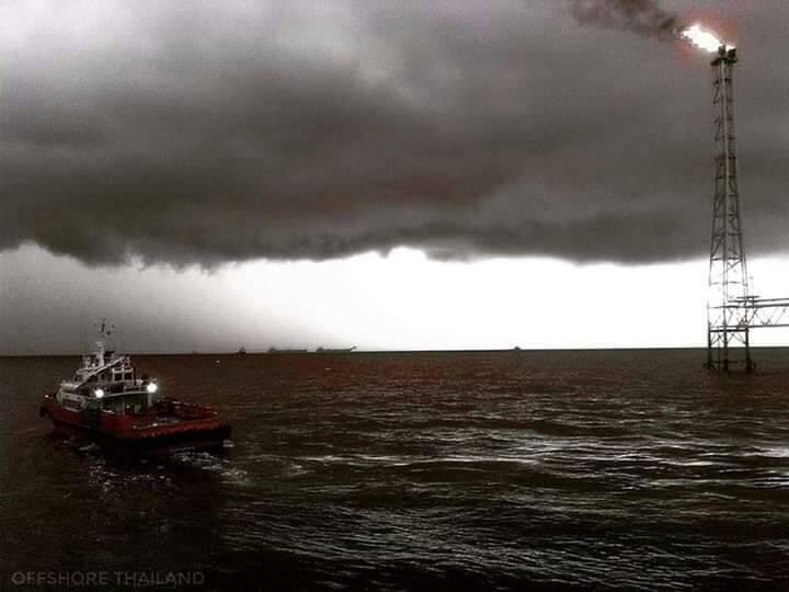 ข่าวพายุ ข่าวสดวันนี้ พายุปาบึก