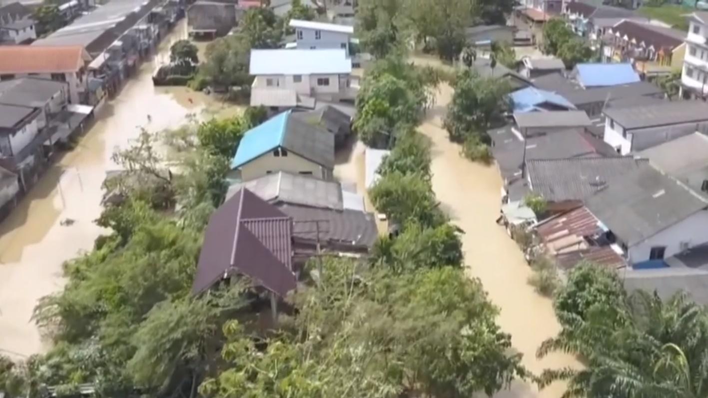 กรมป้องกันและบรรเทาสาธารณภัย ข่าวMono29 พายุปาบึก พายุโซนร้อน