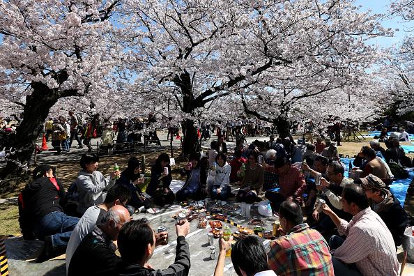 ข่าวสดวันนี้ ญี่ปุ่น ภาษีซาโยนาระ เที่ยวญี่ปุ่น
