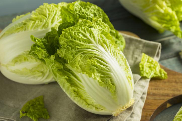 ประโยชน์ของผักกาดขาว ผัก ผักกาดขาว สรรพคุณของผักกาดขาว