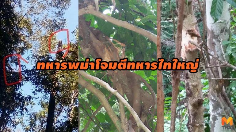 ข่าวภูมิภาค ทหารไทใหญ่ พม่า เขตชายแดน ไทใหญ่