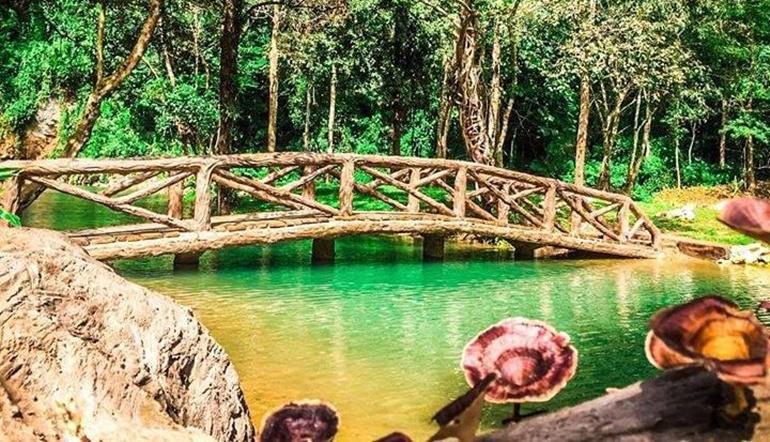 13 หมูป่า ถ้ำหลวง อุทยานถ้ำหลวง-ขุนน้ำนางนอน