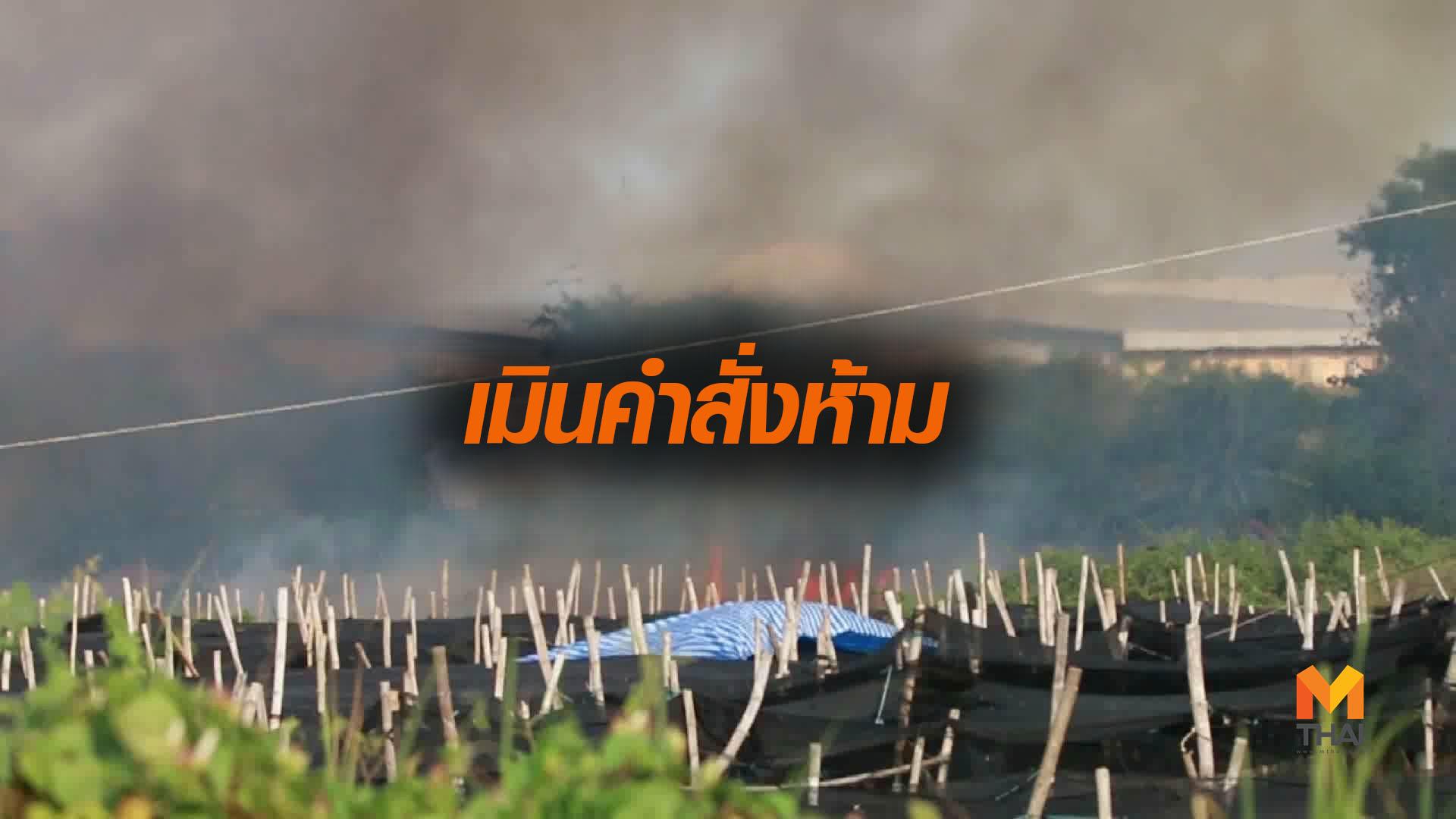 PM2.5 ฝุ่น PM2.5 เผานา เผาไร่
