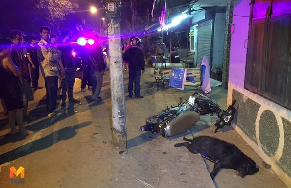 ข่าวจังหวัดขอนแก่น ข่าวสดวันนี้ จักรยานยนต์ชนหมา ชนหมาตาย รถชน