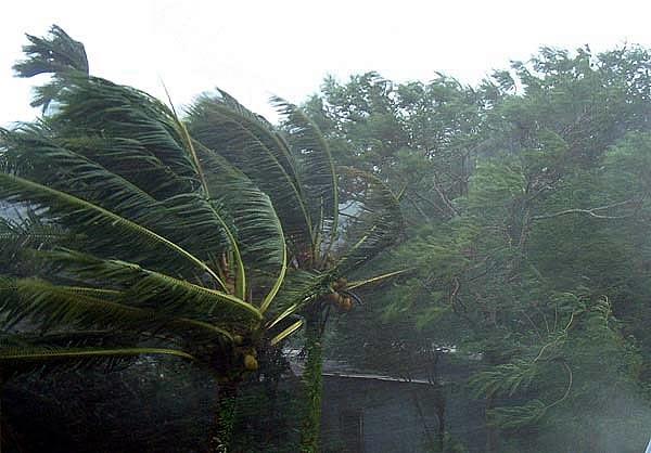 ฝนตก พายุฤดูร้อน