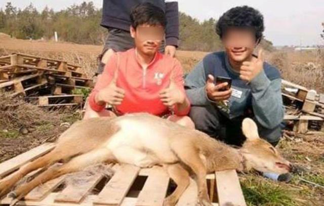 ข่าวสดวันนี้ ข่าวเกาหลีใต้ สัตว์ป่า แรงงานไทย