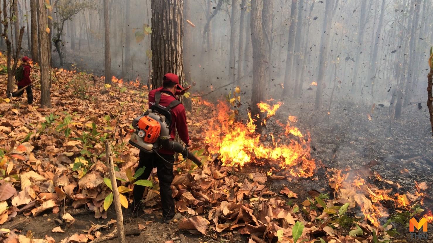 ข่าวภูมิภาค ฝุ่นละออง แม่ฮ่องสอน ไฟป่า ไฟไหม้