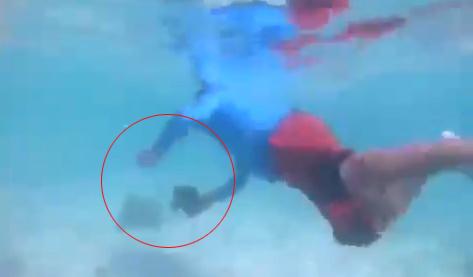 ข่าวจังหวัดกระบี่ ข่าวสดวันนี้ ปลานีโม่ เกาะแสมสาร ไกด์เถื่อน
