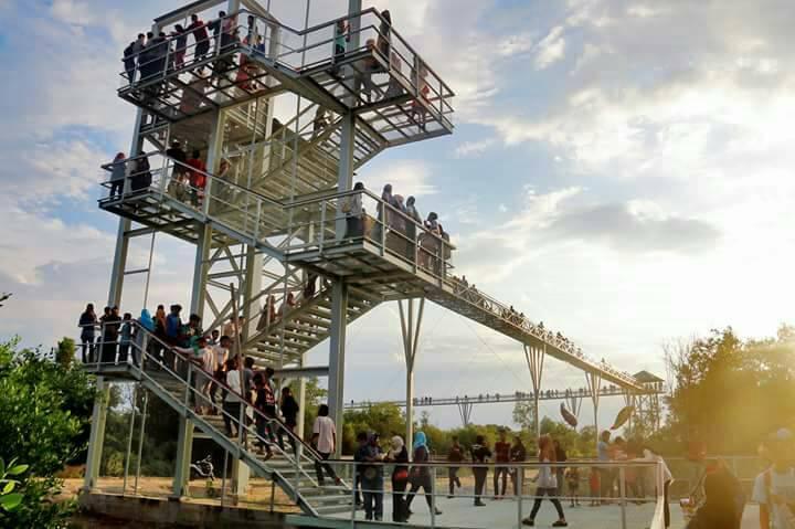 Pattani Adventure Park skywalk จังหวัดปัตตานี ที่เที่ยวปัตตานี ที่เที่ยวภาคใต้ สกายลวอล์ค ปัตตานี สกายวอล์ค เที่ยวปัตตานี เที่ยวภาคใต้