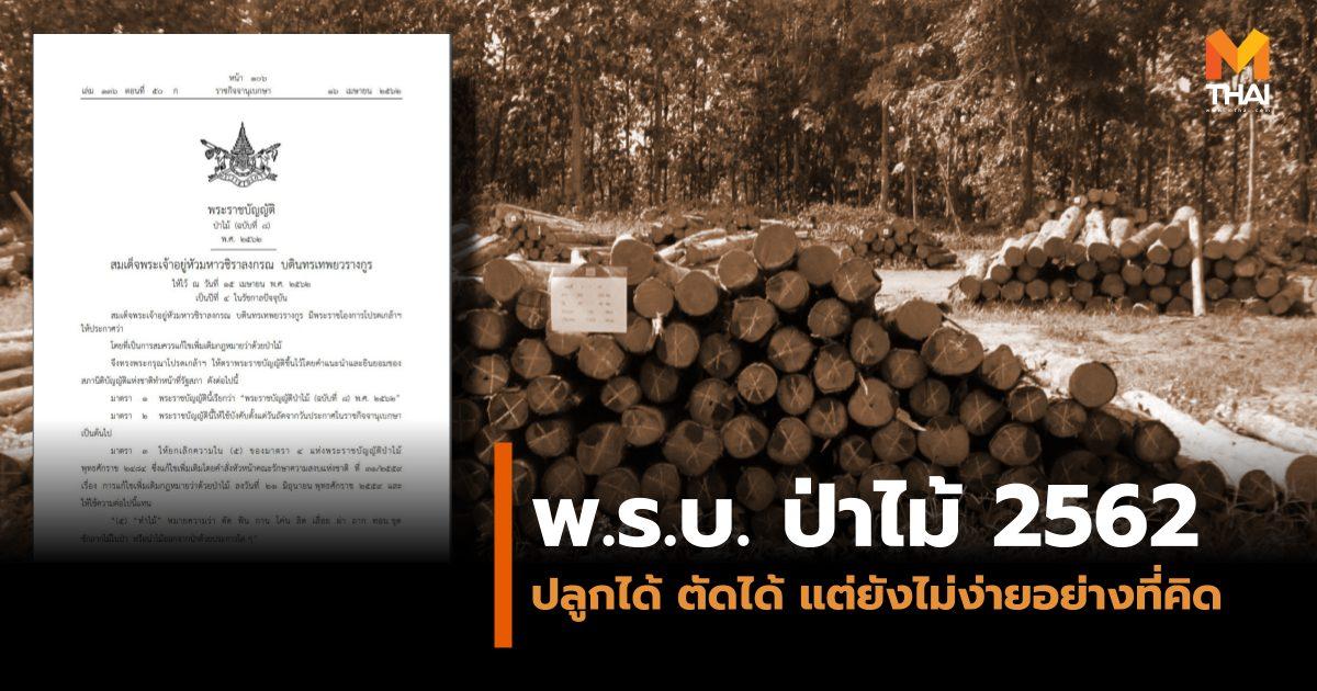พ.ร.บ. ป่าไม้ 2562