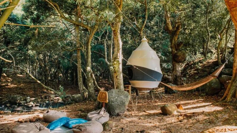 ที่อยู่อาศัย ธรรมชาติ บ้านต้นไม้ พลังงานแสงอาทิตย์ สิ่งแวดล้อม