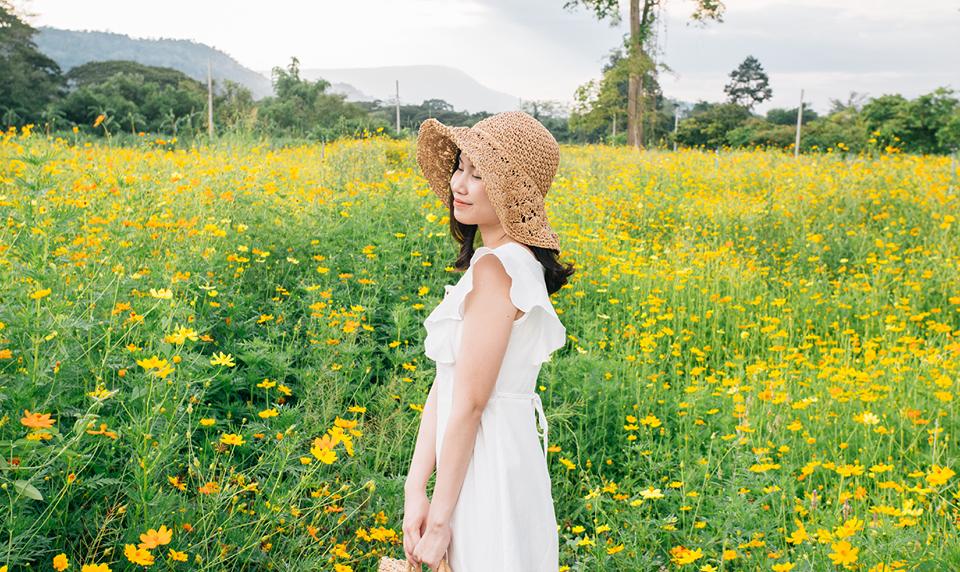 The Verona Tub Lan ดอะ เวโรน่า ทับลาน ที่เที่ยวปราจีนบุรี ทุ่งดอกคอสมอส เที่ยวปราจีนบุรี
