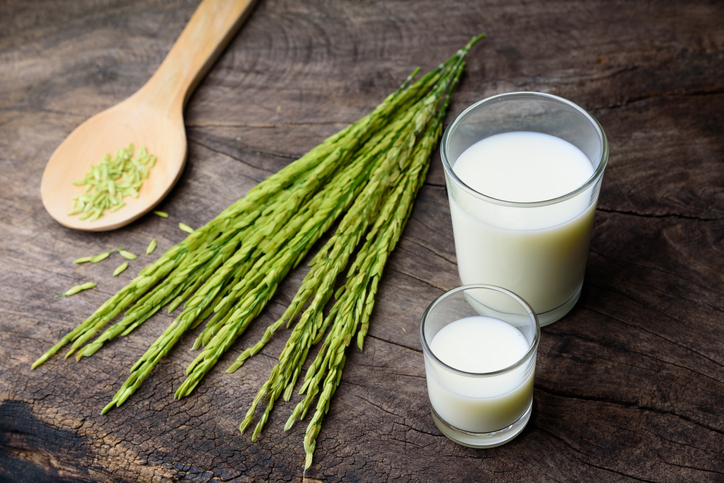 rice milk นมข้าว น้ำนมข้าว ประโยชน์ของนมข้าว