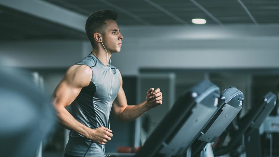 fitness ฟิตหุ่น ฟิตเนส มือใหม่ฟิตเนสต้องรู้อะไรบ้าง ลดความอ้วน สร้างกล้าม ออกกำลังกาย