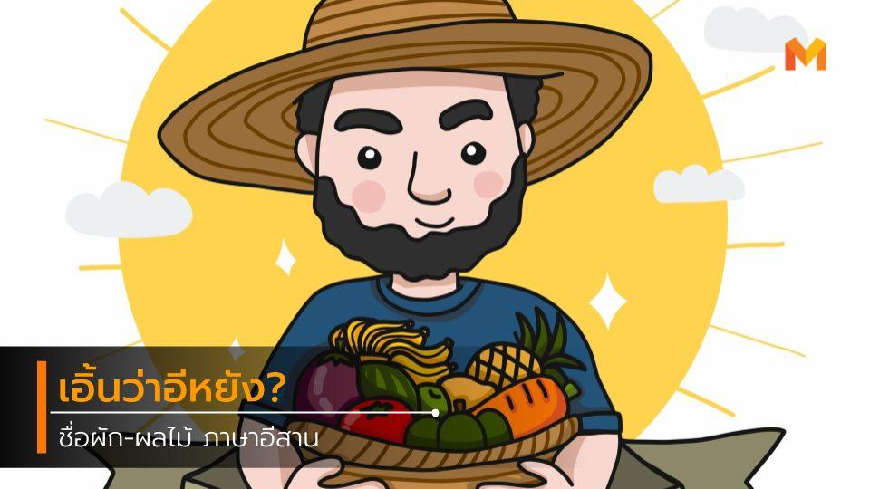 ผลไม้ ภาษาอีสาน ผัก ภาษาอีสาน ฝึกภาษา ภาษาอีสาน ภาษาไทย รวมคำศัพท์อีสานน่ารู้ เกร็ดความรู้ เว่าภาษาอีสาน เอิ้นภาษาอีสาน