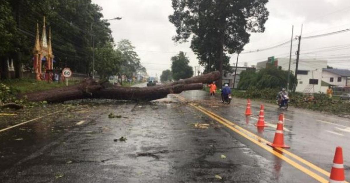 ข่าวสดวันนี้ น้ำท่วม พายุโพดุล ยโสธร