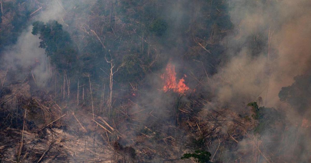 ข่าวสดวันนี้ บราซิล ไฟป่าแอมะซอน