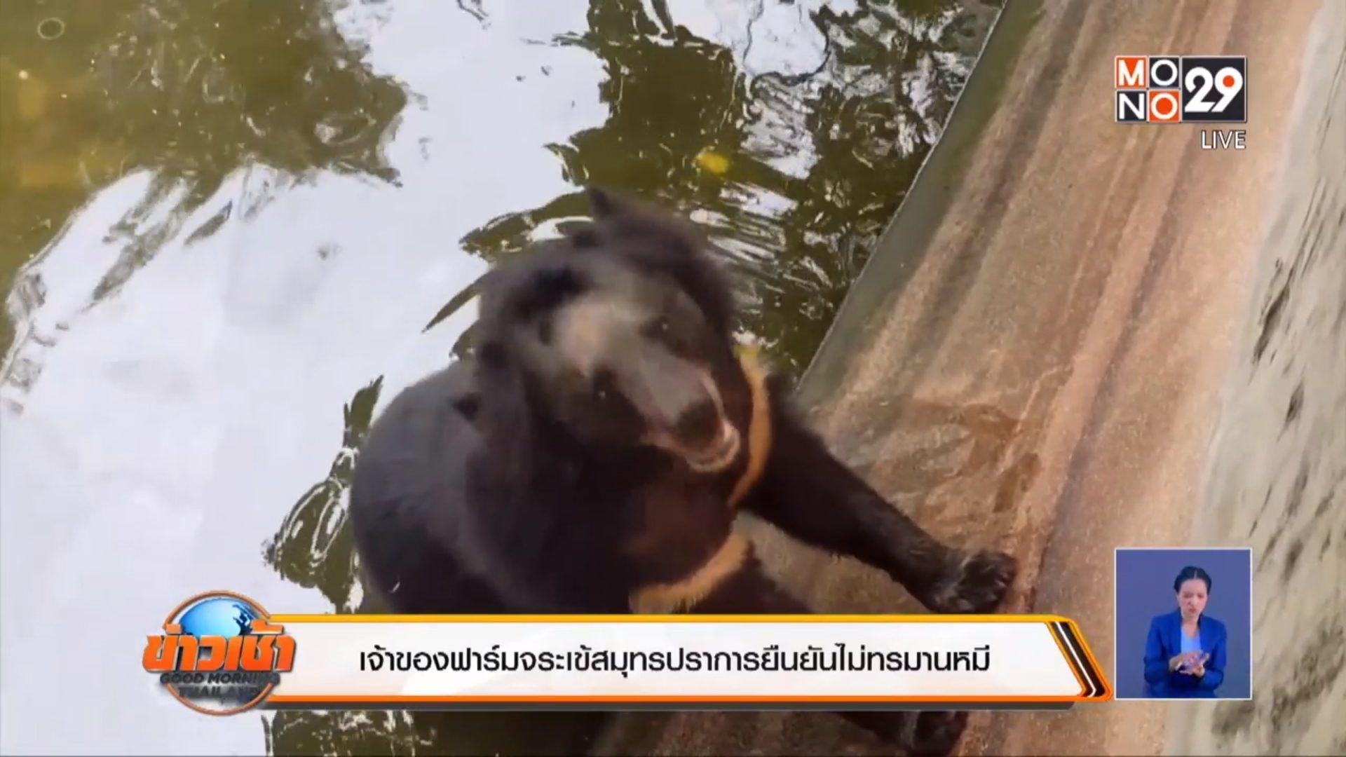 ทรมานสัตว์ ฟาร์มจระเข้ หมี