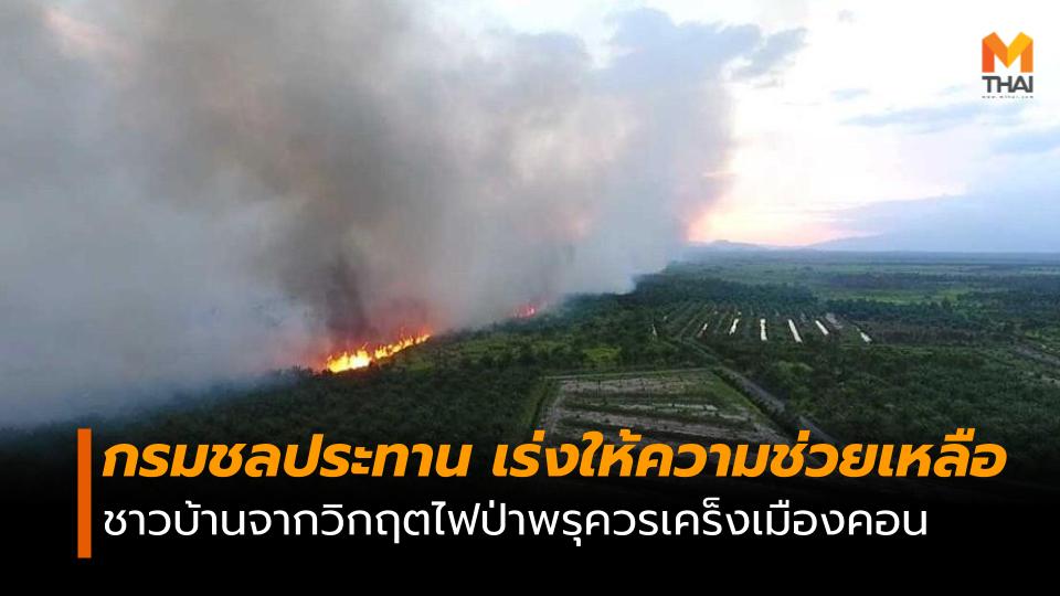 ไฟป่าพรุควรเคร็ง ไฟไหม้ป่า