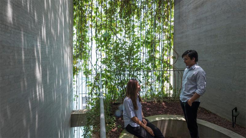Facade ช่องแสงธรรมชาติ ตึกแถว บ้านตึกแถว ปลูกต้นไม้ ลดโลกร้อน ไม้เลื้อย
