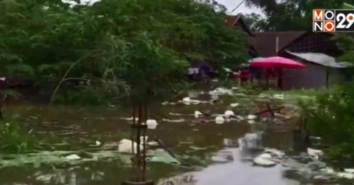กัมพูชา ข่าวสดวันนี้ น้ำท่วม น้ำท่วมเขมร