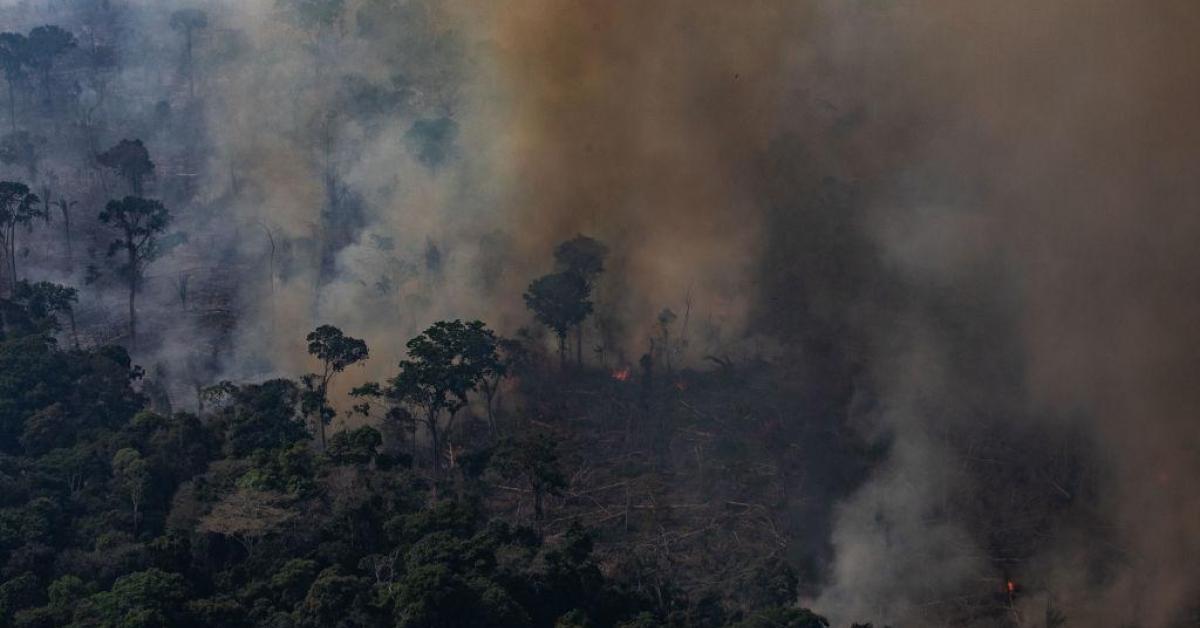 ข่าวสดวันนี้ บราซิล ไฟป่าอะเมซอน