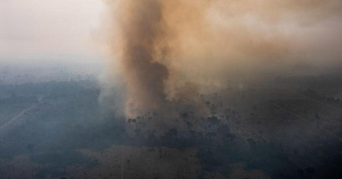 ข่าวสดวันนี้ ไฟป่าอะเมซอน