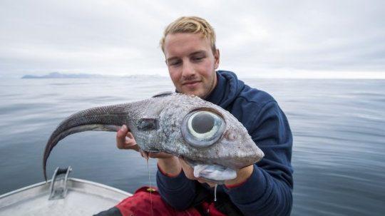 ข่าวนอร์เวย์ ข่าวสดวันนี้ ปลาหนู