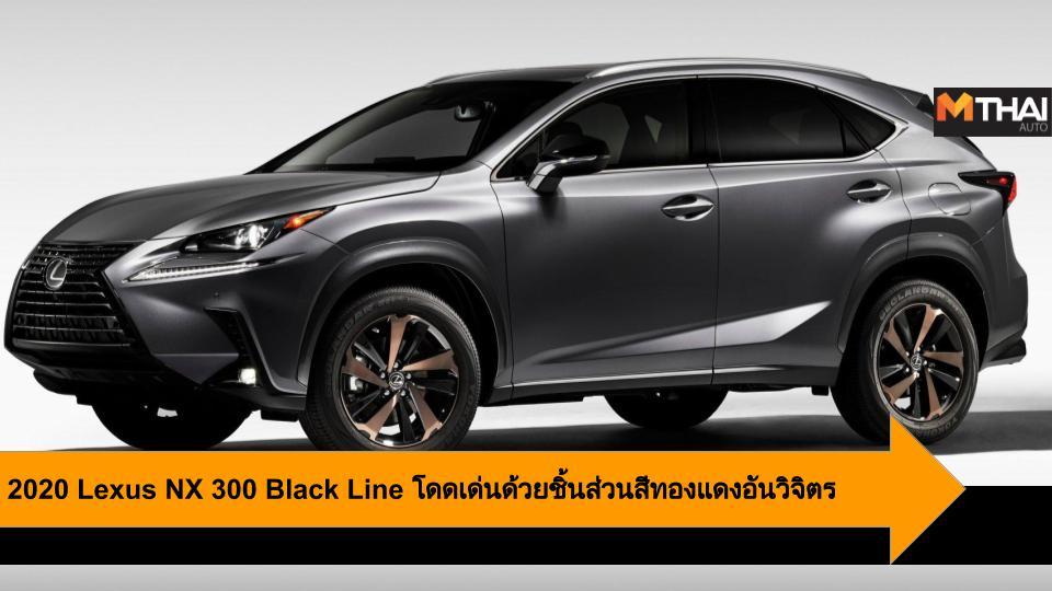 2020 Lexus NX 300 Black Line lexus Lexus NX รถรุ่นพิเศษ เล็กซัส