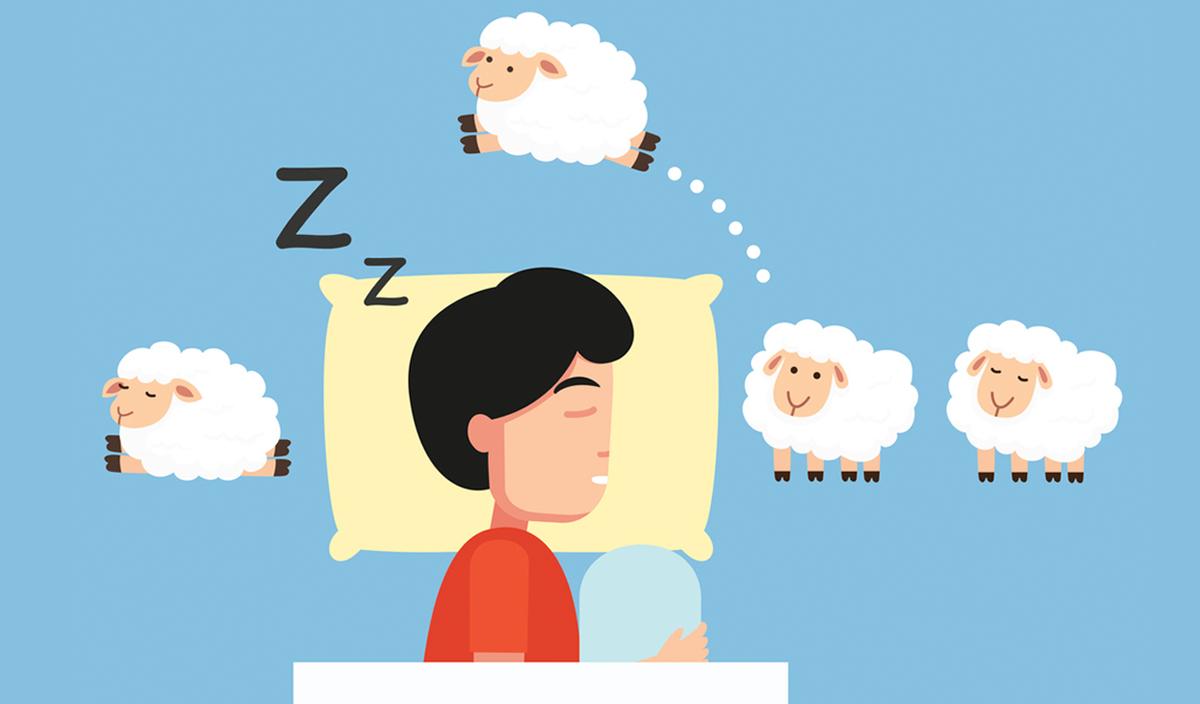 การนอนหลับ นอน นอนหลับ วงจรการนอนหลับ หลับ