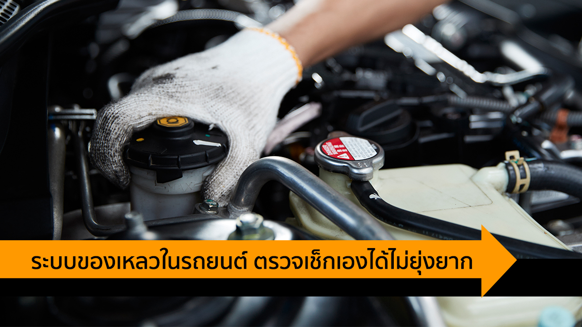 FIT Auto ระบบของเหลว ระบบของเหลวในรถ