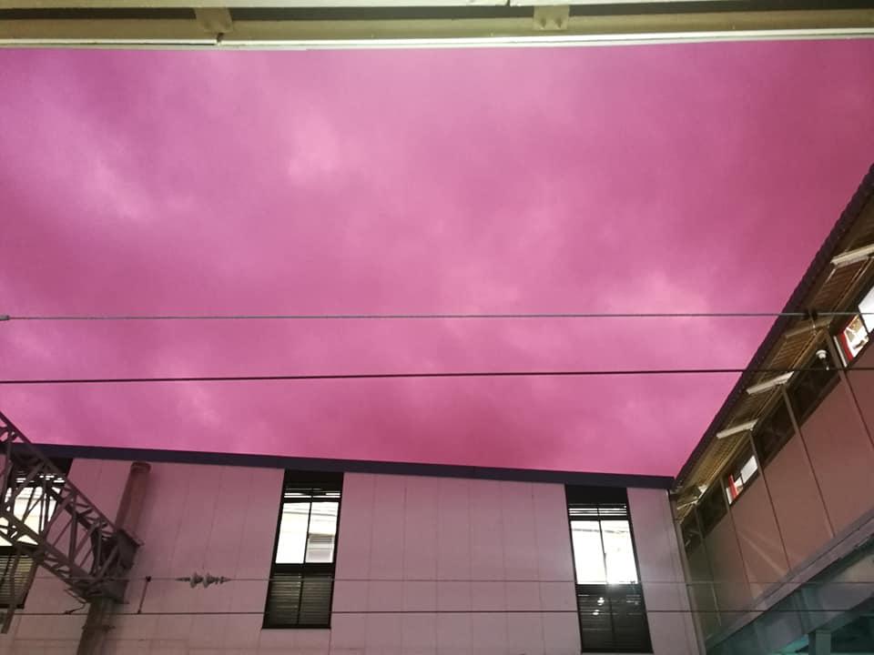 ข่าวญี่ปุ่น ข่าวสดวันนี้ ท้องฟ้าสีชมพู พายุไต้ฝุ่นฮาบิกิส