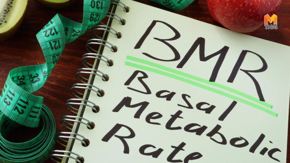 วิธีคำนวณ BMR วิธีคำนวณ BMR และ TDEE สูตรลดน้ำหนัก สูตรลดน้ำหนัก 20 กก.