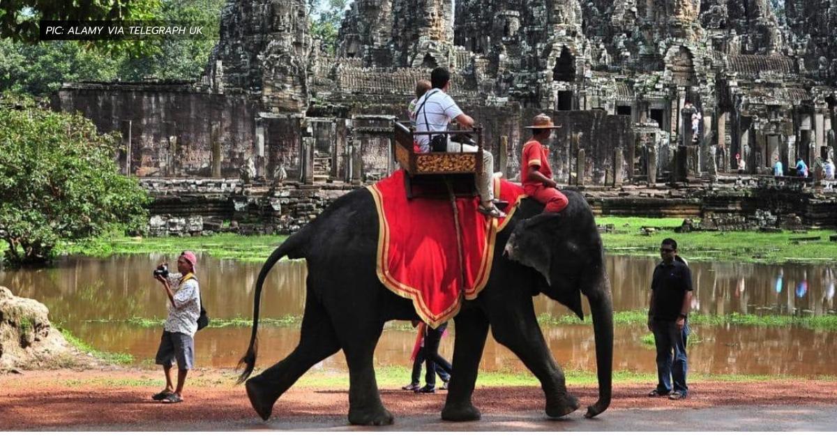 กัมพูชา ข่าวสดวันนี้ แบนการขี่ช้าง