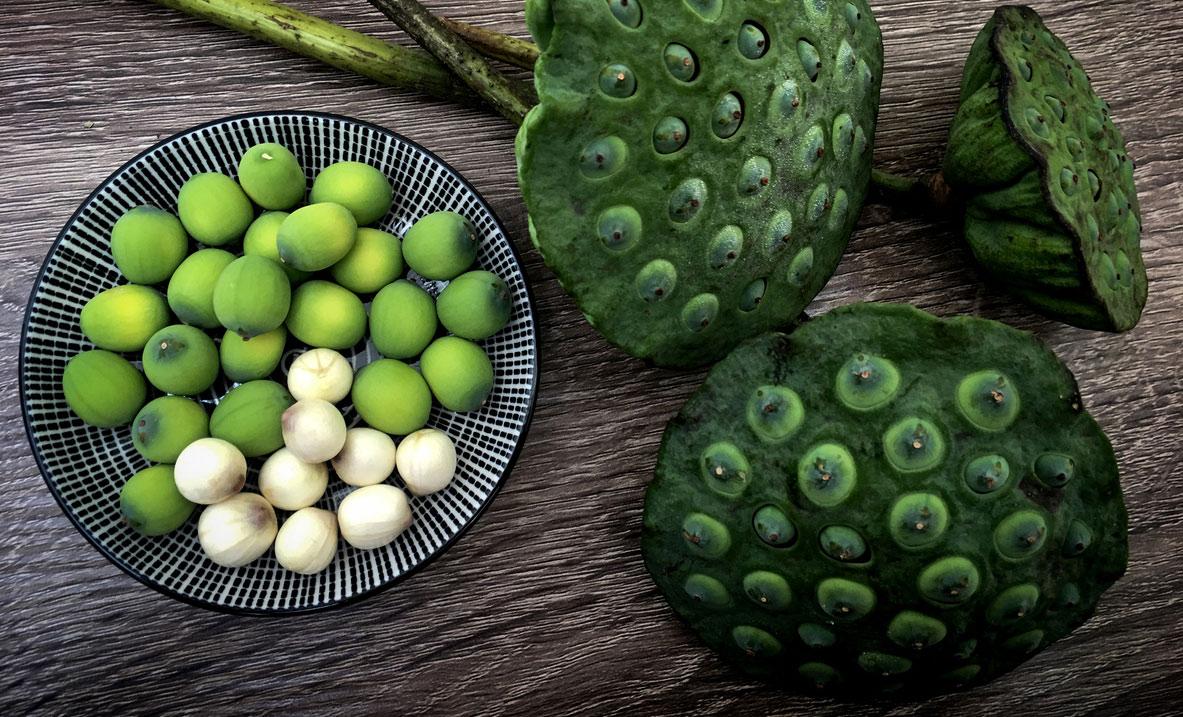 ธัญพืช ประโยชน์ของเม็ดบัว เม็ดบัว เม็ดบัว สรรพคุณ