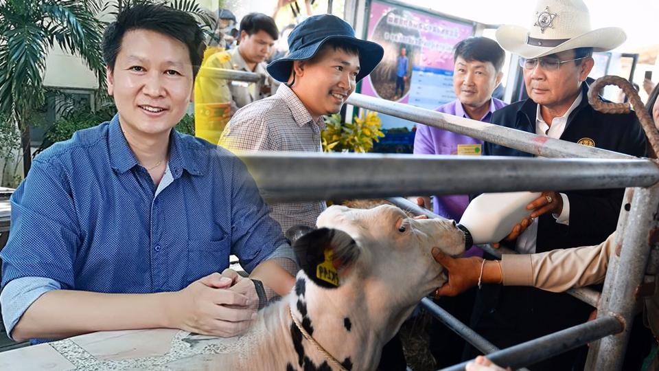 ดื่มนมวัวดิบ นมวัวดิบ