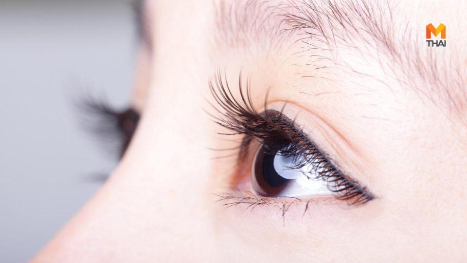ขนตา ขนตายาว บำรุงขนตา ยืดขนตา