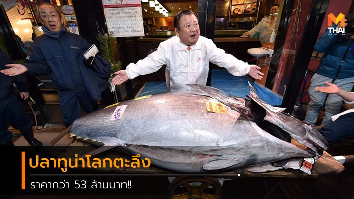 Bluefin Tuna fish market japan Kiyomura Sushizanmai tokyo tuna ญี่ปุ่น ตลาดปลา ทูน่า ปลา ปลาทูน่า