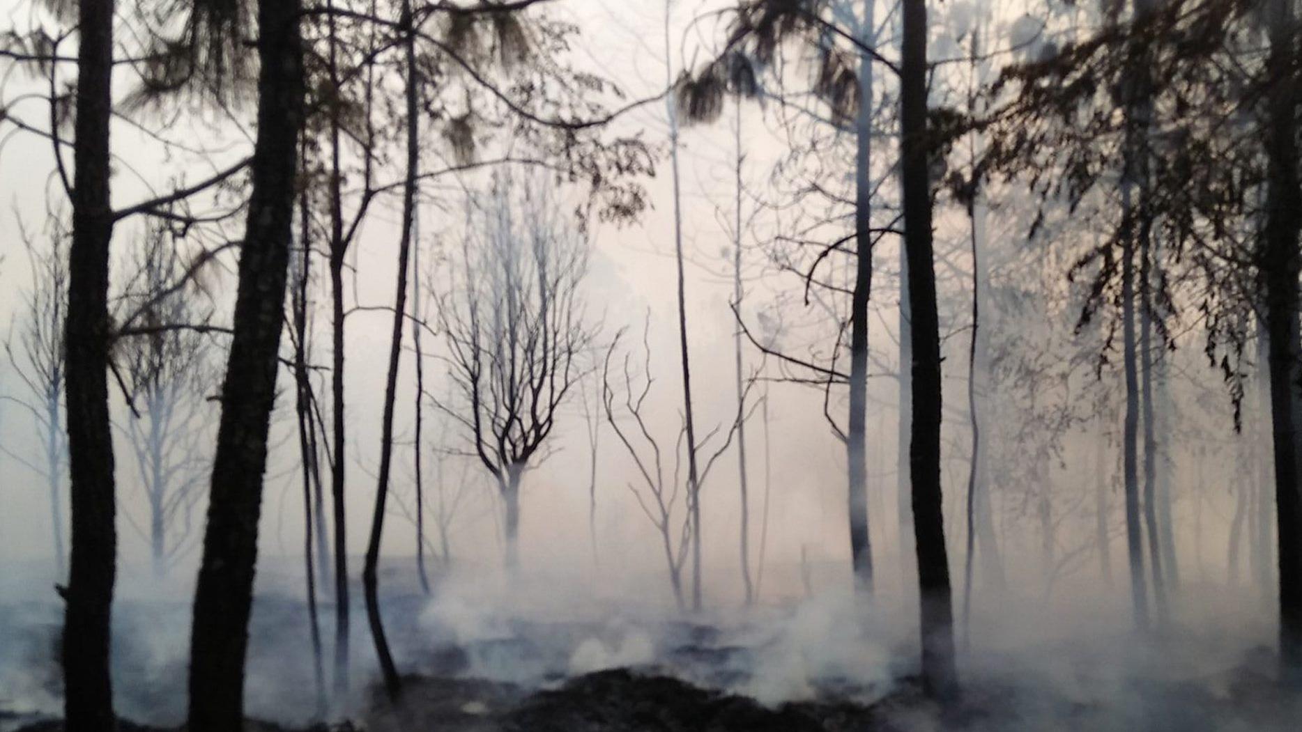 ข่าวสดวันนี้ ไฟป่า ไฟไหม้ป่าภูกระดึง