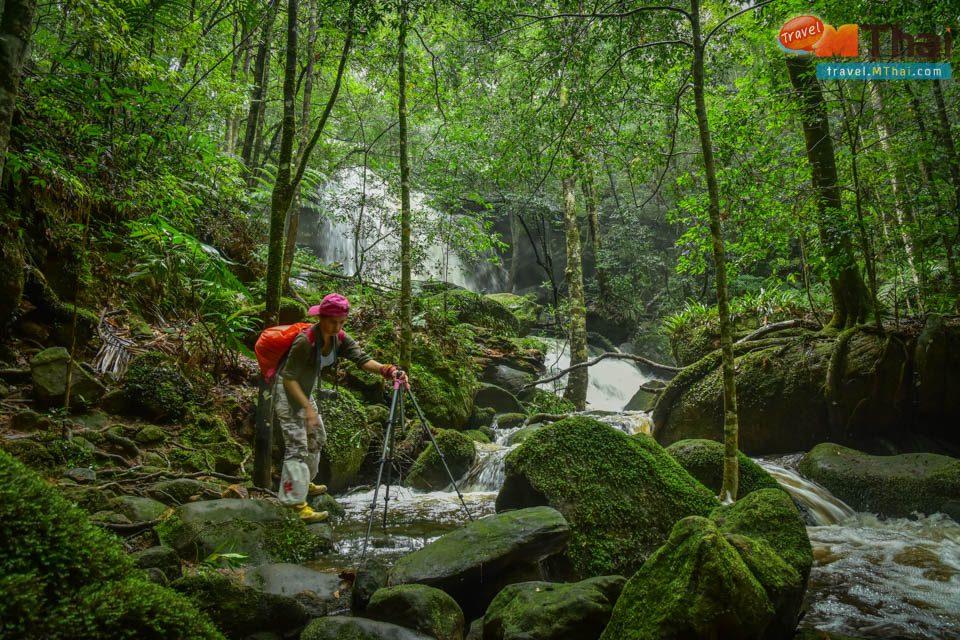 ภูกระดึง วางแผนท่องเที่ยว อุทยานแห่งชาติภูกระดึง เกร็ดข้อมูล เดินป่า เที่ยวหน้าฝน เที่ยวเลย