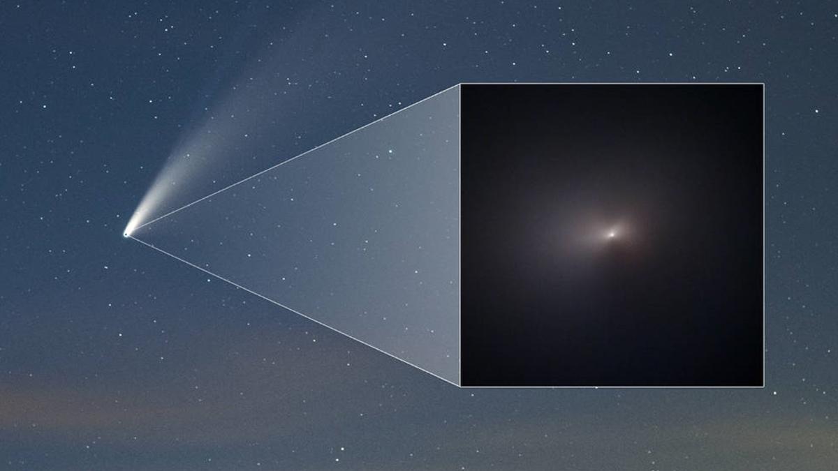 ดาวหางนีโอไวส์