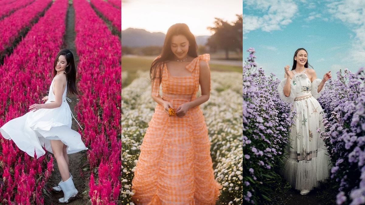 ชุดเดรสแฟชั่น ถ่ายรูปกับทุ่งดอกไม้ ทุ่งดอกไม้ แฟชั่นดารา