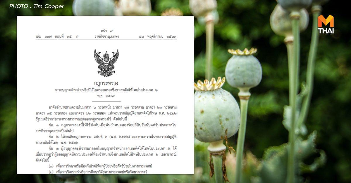 กฎกระทรวงสาธารณาสุข ยาเสพติดประเภท 2 ราชกิจจานุเบกษา