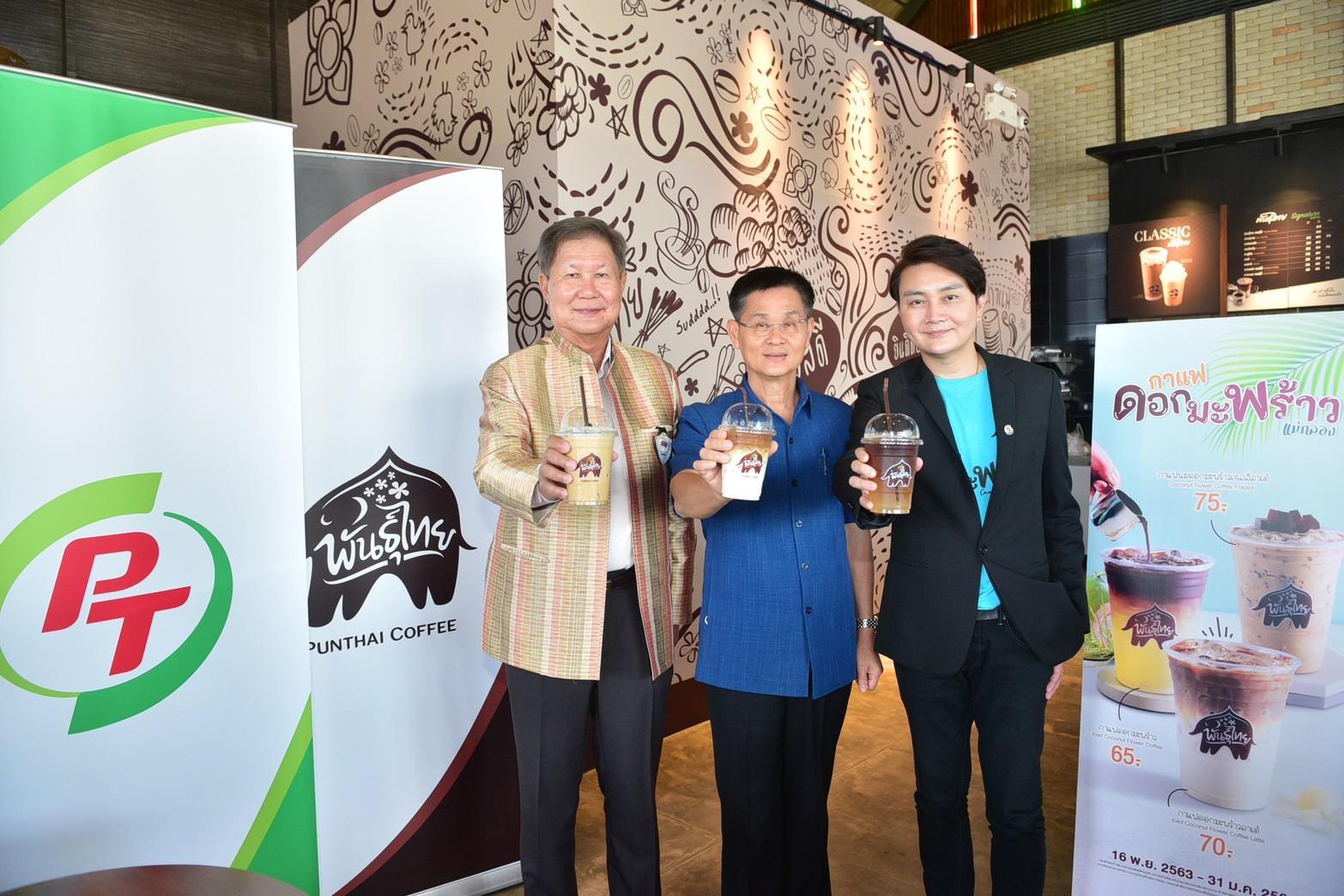 กาแฟ กาแฟดอกมะพร้าว กาแฟพันธุ์ไทย