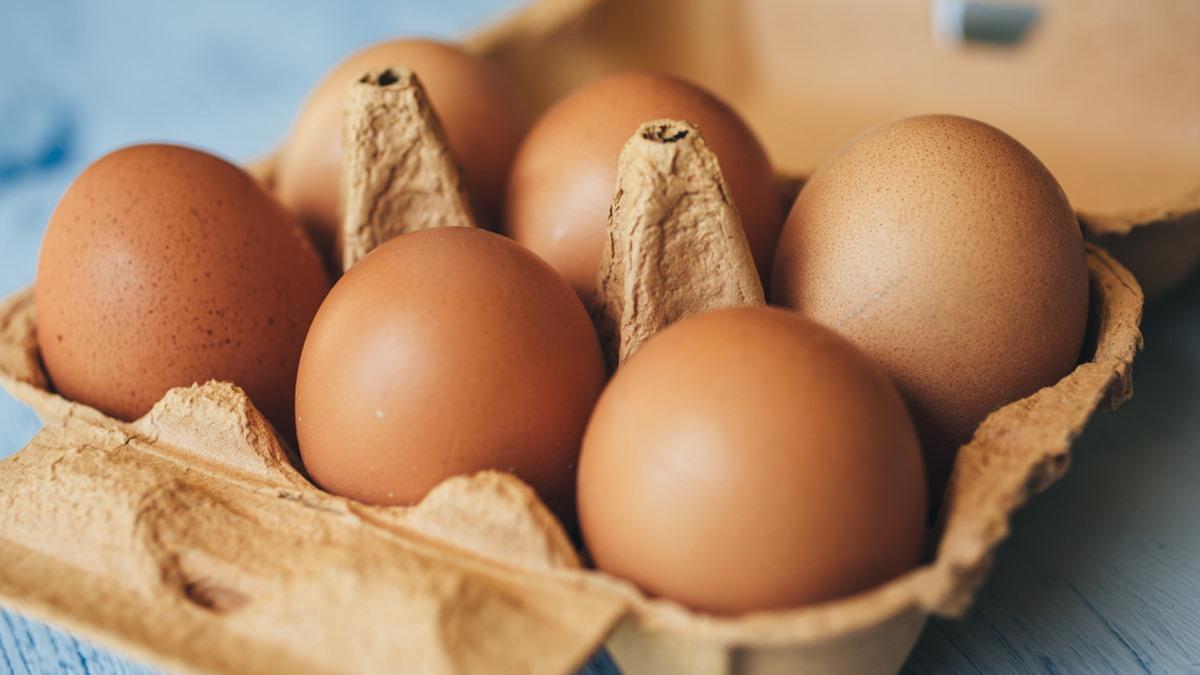 ยืดอายุอาหาร วิธีเก็บไข่ไก่ เก็บรักษาอาหาร ไข่ไก่