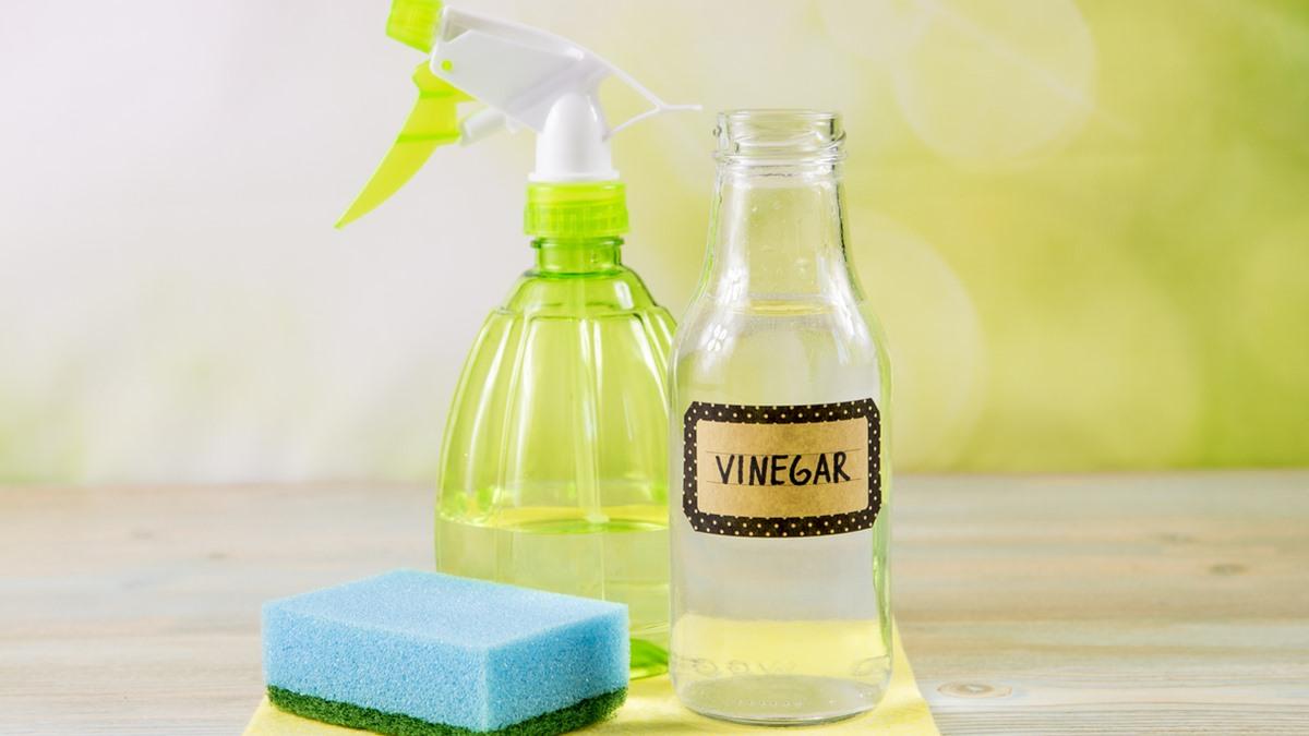 ทำความสะอาดบ้าน น้ำส้มสายชู ประโยชน์น้ำส้มสายชู เคล็ดลับทำความสะอาด เคล็ดลับแม่บ้าน