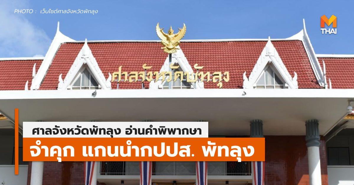 กปปส. ข่าวการเมือง พัทลุง