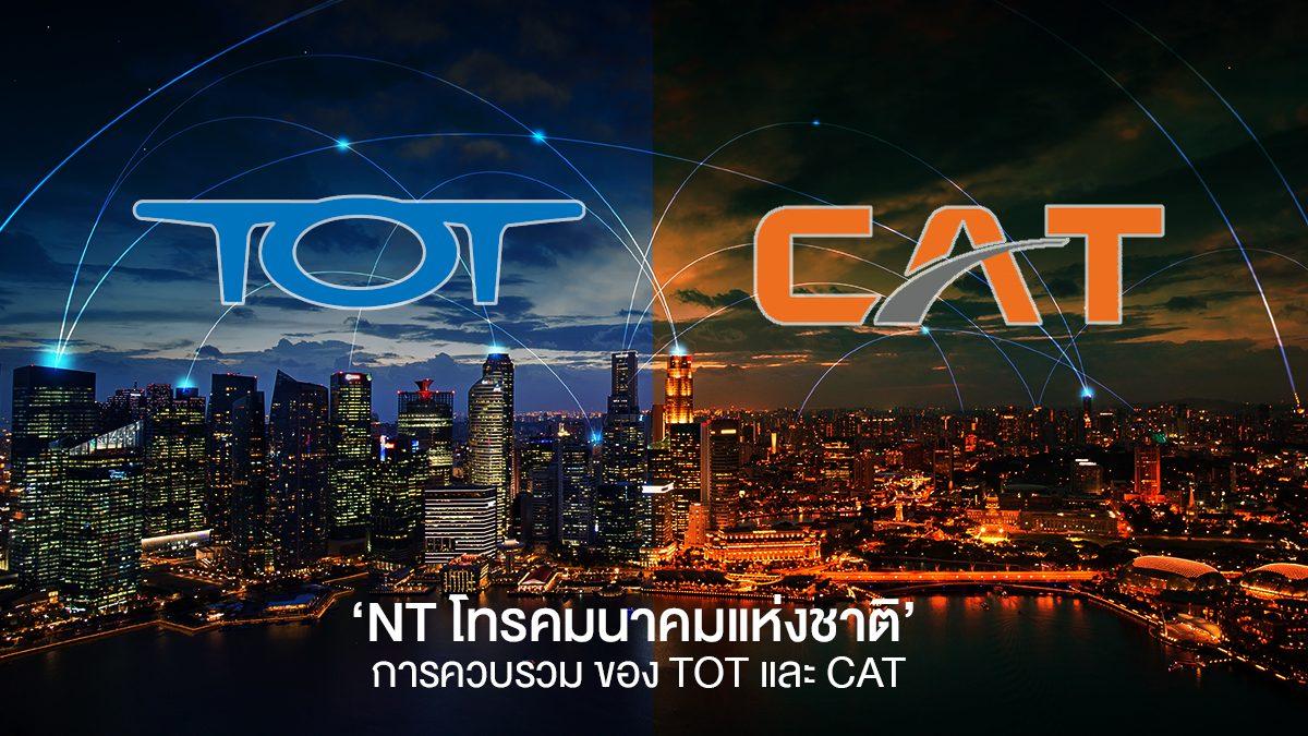 CAT TOT