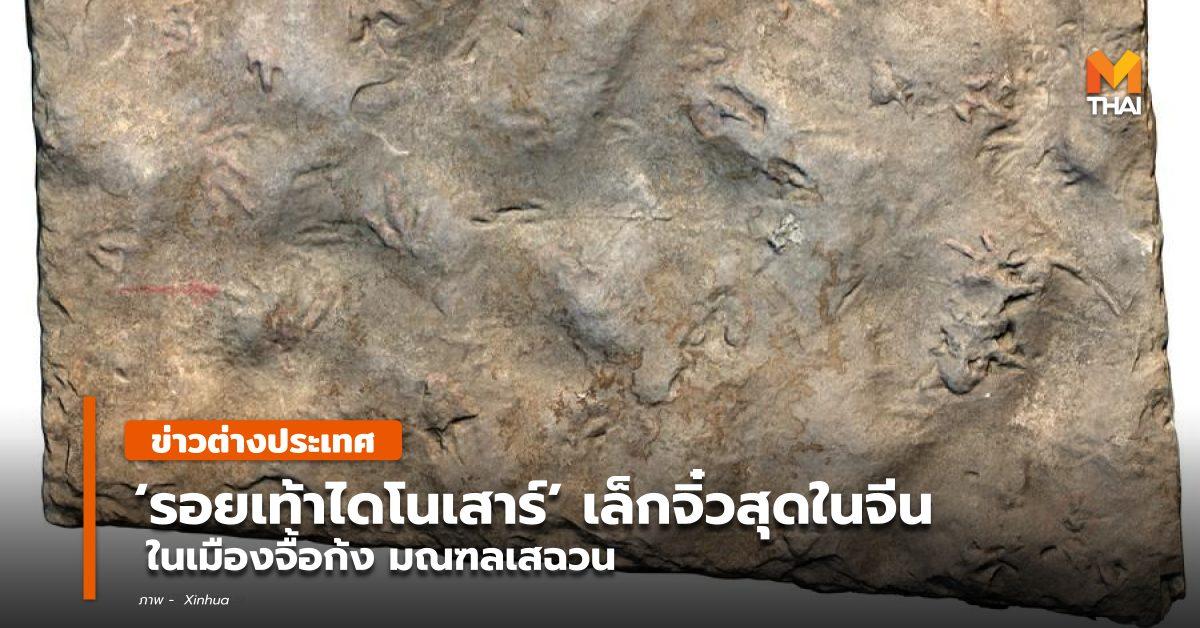 ข่าวต่างประเทศ จีน ฟอสซิล รอยเท้า ไดโนเสาร์