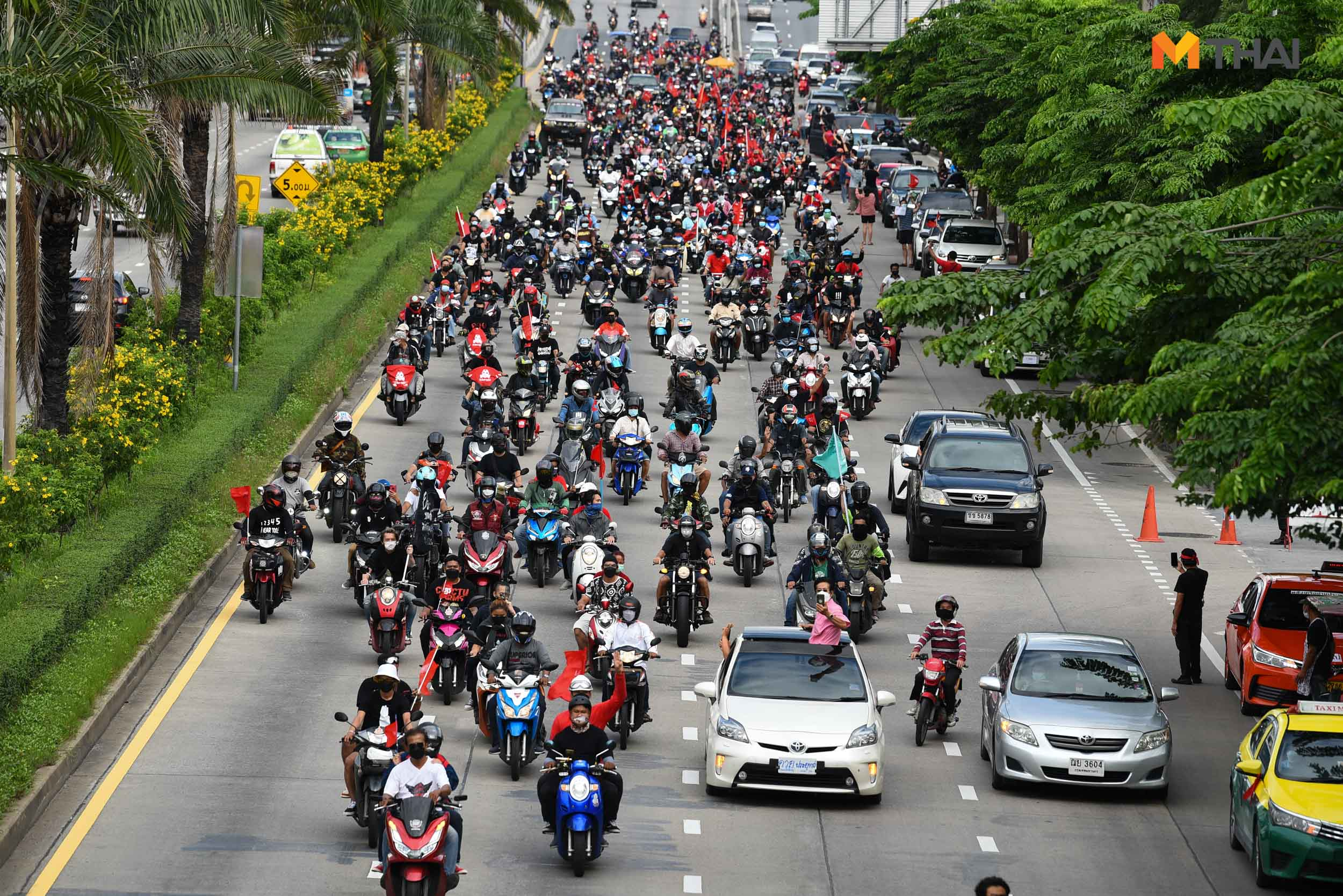 Car Mob การชุมนุม